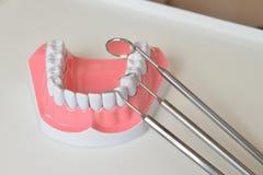 Πρότυπο και οδοντικό σύνολο εργαλείων σαγονιών Στοκ φωτογραφία με δικαίωμα ελεύθερης χρήσης