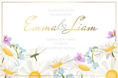 Πρότυπο καρτών πρόσκλησης γεγονότος γαμήλιου γάμου Forget-me-not της Daisy chamomile άγριο πλαίσιο συνόρων λουλουδιών λιβαδιών το ελεύθερη απεικόνιση δικαιώματος