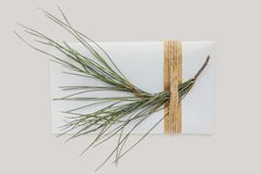 Πρότυπο κιβωτίων με το χριστουγεννιάτικο δέντρο Τυλιγμένο διακόσμηση δώρο με το σχοινί Στοκ φωτογραφίες με δικαίωμα ελεύθερης χρήσης