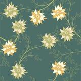 πρότυπο λουλουδιών άνευ ραφής Κήπος θερινού υποβάθρου για το σχέδιο απεικόνιση αποθεμάτων
