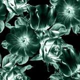 πρότυπο λουλουδιών άνε&upsilo Αυξήθηκε mallow η διακοσμητική εικόνα απεικόνισης πετάγματος ραμφών το κομμάτι εγγράφου της καταπίν στοκ εικόνες