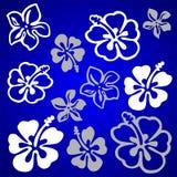 πρότυπο λουλουδιών vectorial Στοκ Φωτογραφία