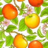 πρότυπο μήλων άνευ ραφής Στοκ φωτογραφίες με δικαίωμα ελεύθερης χρήσης
