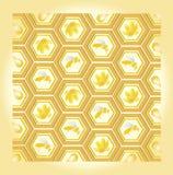 πρότυπο μελιού μελισσών Στοκ εικόνες με δικαίωμα ελεύθερης χρήσης