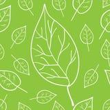 Πρότυπο με τα φύλλα Στοκ εικόνα με δικαίωμα ελεύθερης χρήσης