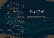 Πρότυπο με το σύνολο ψαριών θάλασσας Πέρκα, βακαλάος, σκουμπρί, πλευρονήκτης, saira διάνυσμα doodle διανυσματική απεικόνιση