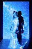 Πρότυπο νυφών στο στούντιο στο μπλε και μαύρο υπόβαθρο Στοκ εικόνες με δικαίωμα ελεύθερης χρήσης