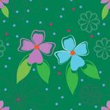 πρότυπο λουλουδιών άνε&upsilo ελεύθερη απεικόνιση δικαιώματος