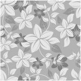 πρότυπο λουλουδιών άνε&upsilo Στοκ Εικόνα