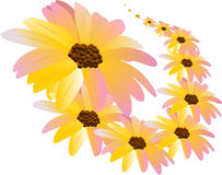 1 πρότυπο λουλουδιών Στοκ εικόνα με δικαίωμα ελεύθερης χρήσης