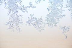 πρότυπο παγετού Στοκ φωτογραφίες με δικαίωμα ελεύθερης χρήσης