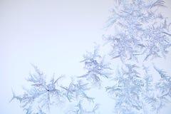 πρότυπο παγετού Στοκ Εικόνες