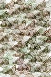 πρότυπο πεταλούδων απεικόνιση αποθεμάτων