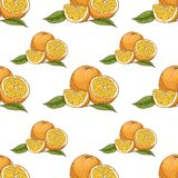 πρότυπο πορτοκαλιών άνευ &r Στοκ εικόνα με δικαίωμα ελεύθερης χρήσης