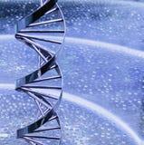 Πρότυπο σκελών DNA μετάλλων Στοκ εικόνες με δικαίωμα ελεύθερης χρήσης