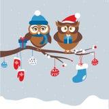 Πρότυπο της κάρτας Χριστουγέννων με το ζεύγος των κουκουβαγιών διανυσματική απεικόνιση