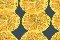 πρότυπο της Χαβάης aloha άνευ ρ&alph Ώριμα φρούτα χυμού συρμένο χέρι Στοκ εικόνες με δικαίωμα ελεύθερης χρήσης