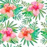 πρότυπο τροπικό Τροπικά λουλούδια και φύλλα για Στοκ Φωτογραφία