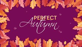 Πρότυπο υποβάθρου φθινοπώρου με τα όμορφα φύλλα και σταγόνες βροχής, απεικόνιση πτώσης με την τέχνη εγγράφου για το έμβλημα Ιστού Στοκ Φωτογραφία
