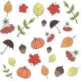 πρότυπο φθινοπώρου άνευ ρ&a Στοκ Εικόνες