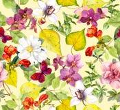 πρότυπο φθινοπώρου άνευ ρ&al Κίτρινα φύλλα, λουλούδια Floral υπόβαθρο Watercolor Στοκ Εικόνες