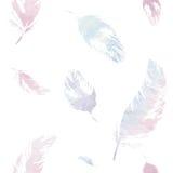 πρότυπο φτερών άνευ ραφής Στοκ φωτογραφία με δικαίωμα ελεύθερης χρήσης