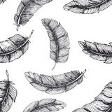 πρότυπο φτερών άνευ ραφής διανυσματική απεικόνιση