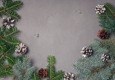 Πρότυπο Χριστουγέννων με τους κλάδους έλατου Στοκ φωτογραφία με δικαίωμα ελεύθερης χρήσης