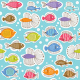 πρότυπο ψαριών άνευ ραφής Στοκ φωτογραφίες με δικαίωμα ελεύθερης χρήσης