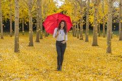 Πρότυπο Brunette στο φύλλωμα πτώσης με την ομπρέλα Στοκ εικόνα με δικαίωμα ελεύθερης χρήσης
