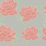 πρότυπο peonies άνευ ραφής ταπετσαρία έκδοσης 0 8 διαθέσιμη eps floral Στοκ Εικόνες
