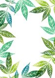 Πρότυπο Watercolor με τα φύλλα δέντρων Στοκ Εικόνες