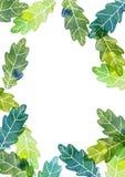 Πρότυπο Watercolor με τα φύλλα δέντρων Στοκ φωτογραφία με δικαίωμα ελεύθερης χρήσης