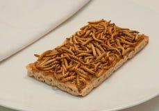Πρόχειρο φαγητό εντόμων Στοκ Εικόνες
