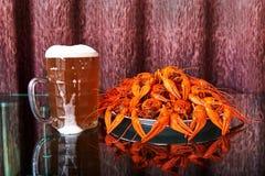 Πρόχειρο φαγητό μπύρας στοκ φωτογραφίες
