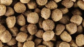 Πρόχειρο φαγητό τροφίμων σκυλιών βιο απόθεμα βίντεο