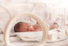 Πρόωρο νεογέννητο κοριτσάκι Στοκ Φωτογραφία