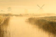 Πρόωρο πουλί Στοκ φωτογραφία με δικαίωμα ελεύθερης χρήσης