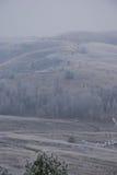 Πρόωρο χειμερινό τοπίο με την παγωμένη βλάστηση Στοκ Εικόνα
