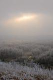 Πρόωρο χειμερινό τοπίο με τις παγωμένα εγκαταστάσεις και τα δέντρα Στοκ φωτογραφία με δικαίωμα ελεύθερης χρήσης