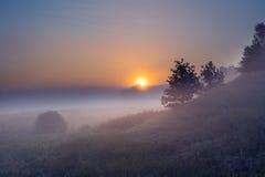 πρώιμη ομιχλώδης ανατολή στιλβωτικής ουσίας πρωινού λιβαδιών Στοκ Εικόνες