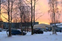 πρώιμος χειμώνας Στοκ Εικόνα
