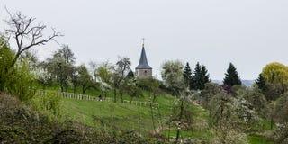 πρώιμο ελατήριο στους λόφους του Limbourg, Βέλγιο, Homburg Στοκ εικόνα με δικαίωμα ελεύθερης χρήσης