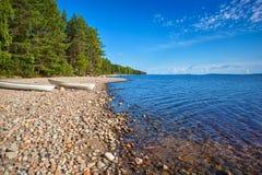 πρώιμο καλοκαίρι ακτών πρωινού λιμνών στοκ φωτογραφίες με δικαίωμα ελεύθερης χρήσης