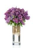Πρώτα δασικά λουλούδια ελατηρίων στο βάζο, που απομονώνεται στο λευκό Στοκ εικόνα με δικαίωμα ελεύθερης χρήσης