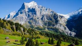 Πρώτα βουνά Ελβετία Στοκ Φωτογραφία