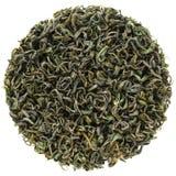 Πρώτα επίπεδος βαθμός πράσινο τσάι ανταγωνισμού Laoshan Shandong στοκ φωτογραφία με δικαίωμα ελεύθερης χρήσης