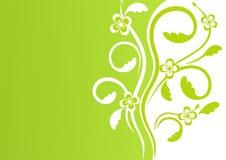 πρώτα λουλούδια Στοκ εικόνες με δικαίωμα ελεύθερης χρήσης