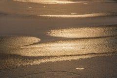 Πρώτα ο πάγος στο ηλιοβασίλεμα Στοκ Εικόνες