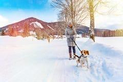 Πρώτη φορά σκυλιών λαγωνικών στο χιόνι με τον ιδιοκτήτη στοκ εικόνα